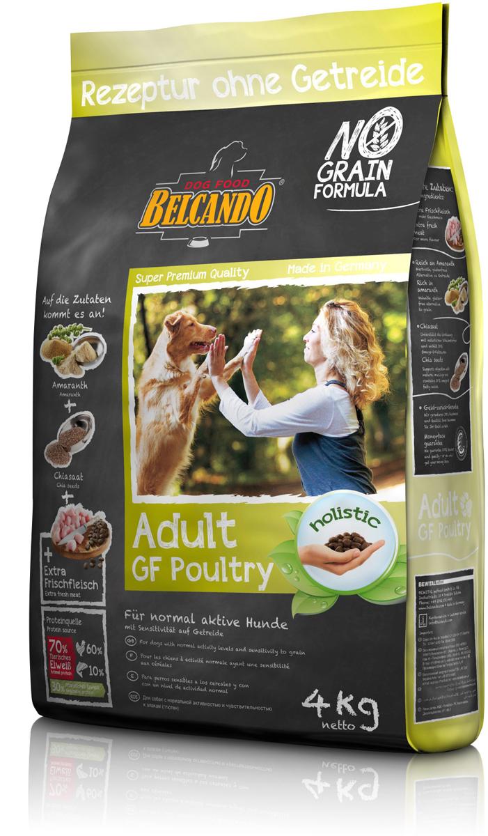 Сухой корм Belcando Adult GF Poultry для собак, беззерновой, с птицей, 4 кг554415Питательный альтернативный корм для собак, которые плохо переносят глютен и зерновые. В этом составе корма зерновые заменены амарантом высокого качества. Амарант является одной из старейших сельскохозяйственных культур, оценённой ещё ацтеками за свои энергетические свойства. С добавлением полезных семян чии, которые также были одним из первых продуктов питания, - делает данный корм особенно сбалансированным. С ограниченным содержанием белков и жиров, корм Belcando для взрослых собак без зерновых культур подходит животным с нормальным уровнем активности.Богатое содержание амаранта - питательная альтернатива злакам, без содержания глютена. Семена чии - поддерживают пищеварение при помощи природных слизистых веществ и содержат 20% жирных кислот Омега-3. Изготовлено без применения зерна, сои, молочных продуктов.Состав: свежее мясо птицы (30 %); амарант (20 %); картофельный крахмал; белок домашней птицы, пониженной зольности, высушенный (15 %); гороховая мука; мука сельди (2,5 %); сухой жом, обессахаренный; мука из виноградной косточки; пивные дрожжи, сушёные; цареградский стручок, высушенный; жир домашней птицы; растительные масла (пальмовое, кокосовое); дикальций фосфат; гидролизат печени птицы; cсемена чии (1 %); поваренная соль; калий хлористый; травы, сушёные (всего: 0,2 %; листья крапивы, корень горечавки, золототысячник, ромашка, фенхель, тмин, омела, тысячелистник, листья ежевики); экстракт юкки