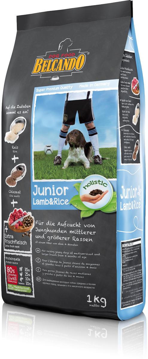 Корм сухой Belcando Junior Lamb & Rice для собак средних и крупных пород, ягненок и рис, 1 кг553105Отборное сырьё со сбалансированным соотношением энергии и минеральных веществ обеспечивают гармоничный рост. Корм Belcando Junior Lamb & Rice прекрасно подходит для чувствительных молодых собак за счёт большого количества нежного ягнёнка и легкоусвояемого риса. Ценные семена чии помогают пищеварению благодаря наличию натуральных слизистых веществ и являются источником незаменимых жирных кислот.ProVital - усиливает защитные силы организма собаки благодаря содержанию компонентов клеточных стенок (бета-гликанов) из натуральных дрожжей. ProAgil - благодаря гидролизату желатина/коллагена способствует формированию суставных хрящей и служит для профилактики заболеваний в суставах. Семена чии - поддерживают пищеварение при помощи природных слизистых веществ и содержат 20% жирных кислот Омега-3. С богатым содержанием риса - очень легко усваиваемый углевод. Изготовлено без применения пшеницы, зерна, сои, молочных продуктов! Состав: свежее мясо ягнёнка, печень, лёгкие (всего: 30 %); рис (30 %); семена овса; белок мяса ягнёнка, высушенный (10 %); белок домашней птицы, пониженной зольности, высушенный (7,5 %); мука сельди (3,5 %); сухой жом, обессахаренный; высушенное яйцо; желатин, гидролизированный (2,5 %); пивные дрожжи, сушёные (2,5 %); цареградский стручок, высушенный; жир домашней птицы; растительные масла (пальмовое, кокосовое); cсемена чии (1,5 %); гидролизат печени птицы; поваренная соль; калий хлористый Протеин - 26%, жир - 15%. Источники белка: животный белок - 80% (ягнёнок - 35%, мясо птицы - 25%, рыба -10%, желатин - 5%), растительный белок - 20%.