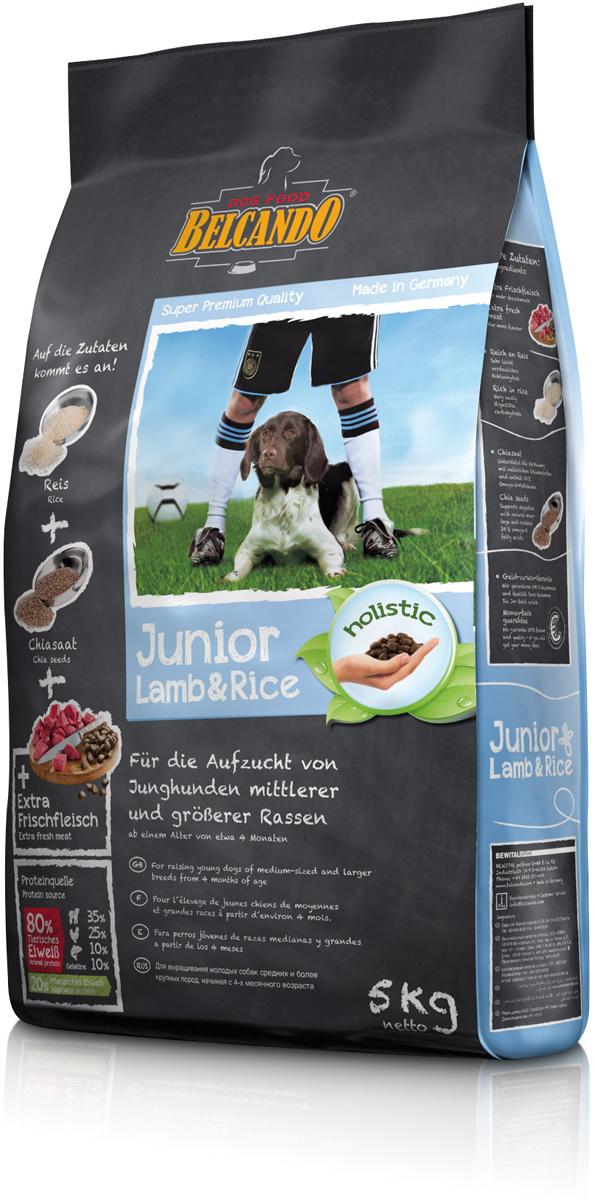Корм сухой Belcando Junior Lamb & Rice для собак средних и крупных пород, ягненок и рис, 5 кг553115Отборное сырьё со сбалансированным соотношением энергии и минеральных веществ обеспечивают гармоничный рост. Корм BelcandoJunior Lamb & Rice прекрасно подходит для чувствительных молодых собак за счёт большого количества нежного ягнёнка и легкоусвояемого риса. Ценные семена чии помогают пищеварению благодаря наличию натуральных слизистых веществ и являются источником незаменимых жирных кислот. ProVital - усиливает защитные силы организма собаки благодаря содержанию компонентов клеточных стенок (бета-гликанов) из натуральных дрожжей. ProAgil - благодаря гидролизату желатина/коллагена способствует формированию суставных хрящей и служит для профилактики заболеваний в суставах. Семена чии - поддерживают пищеварение при помощи природных слизистых веществ и содержат 20% жирных кислот Омега-3. С богатым содержанием риса - очень легко усваиваемый углевод. Изготовлено без применения пшеницы, зерна, сои, молочных продуктов!Состав: свежее мясо ягнёнка, печень, лёгкие (всего: 30 %); рис (30 %); семена овса; белок мяса ягнёнка, высушенный (10 %); белок домашней птицы, пониженной зольности, высушенный (7,5 %); мука сельди (3,5 %); сухой жом, обессахаренный; высушенное яйцо; желатин, гидролизированный (2,5 %); пивные дрожжи, сушёные (2,5 %); цареградский стручок, высушенный; жир домашней птицы; растительные масла (пальмовое, кокосовое); cсемена чии (1,5 %); гидролизат печени птицы; поваренная соль; калий хлористыйПротеин - 26%, жир - 15%. Источники белка: животный белок - 80% (ягнёнок - 35%, мясо птицы - 25%, рыба -10%, желатин - 5%), растительный белок - 20%.