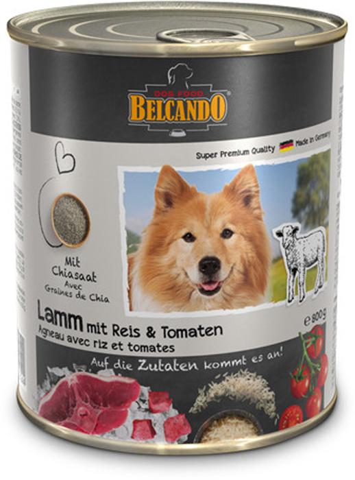 Консервы для собак Belcando ягненок с рисом и помидорами 800 г белькандо консервы с мясом и лапшой для собак belcando best quality meat with noodles 800 г