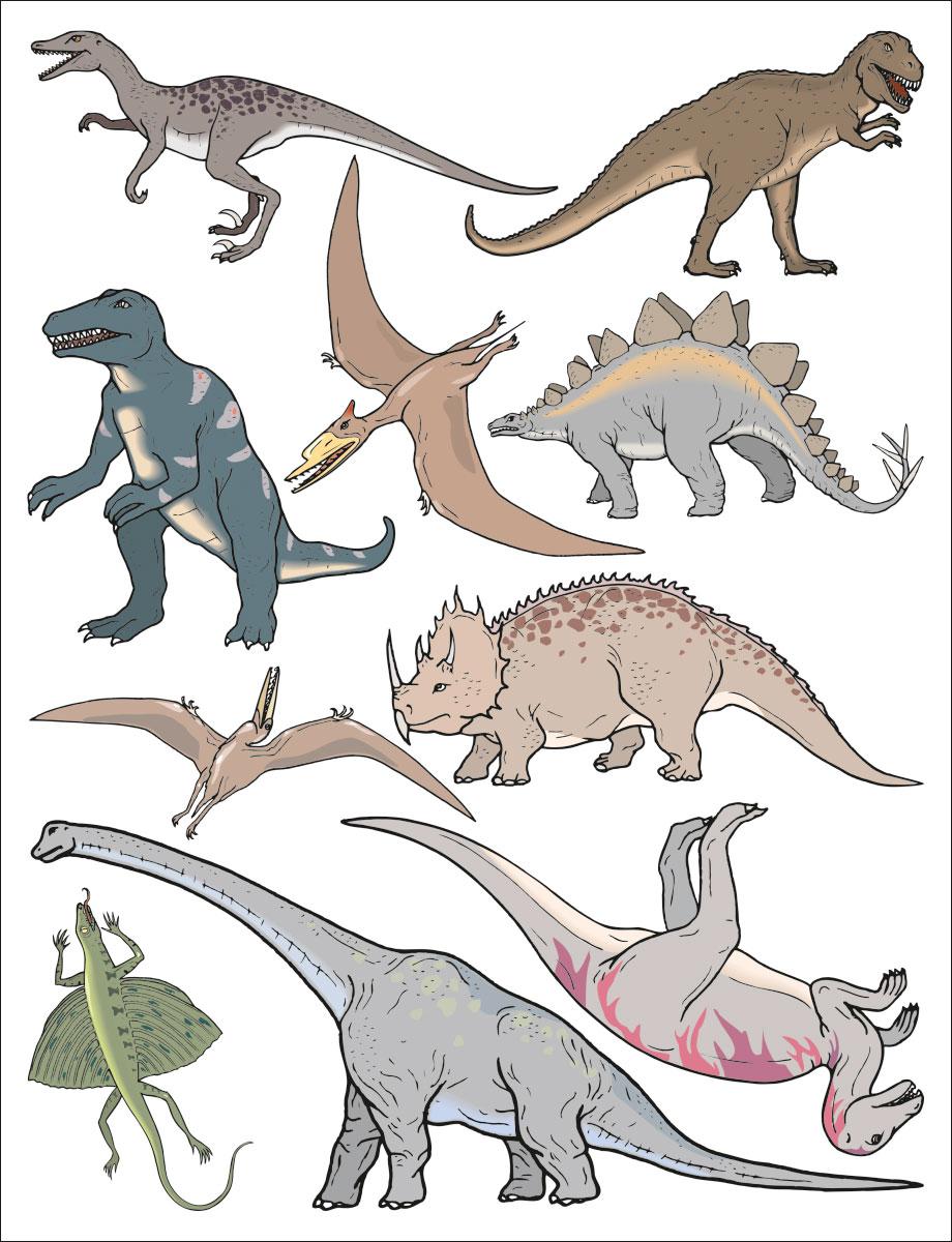 Наклейка декоративная Оранжевый Слоник Динозавры, 30 х 25 см32DN010RGBЛегкосъемные наклейки предназначены для украшения помещений и предметов интерьера. Снимаемый полиакрилатный клей обеспечивает легкое и безостаточное удаление с большинства поверхностей в течение 2-х лет. Каждое изображение на листе вырезано и является самостоятельным рисунком.