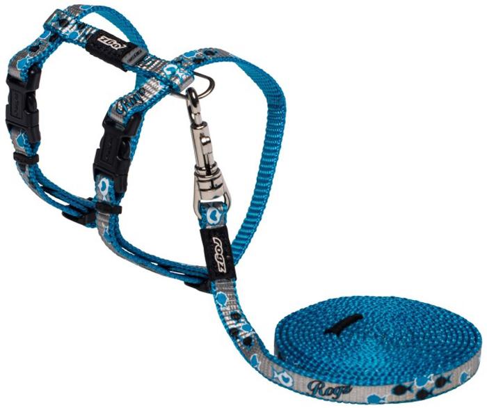 Комплект для кошек Rogz  ReflectoCat : шлейка, поводок, цвет: синий. Размер XS - Товары для прогулки и дрессировки (амуниция)