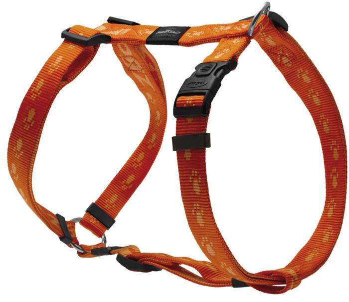 Шлейка для собак Rogz Alpinist, цвет: оранжевый, ширина 2,5 см, обхват шеи 43-70 см, обхват груди 60-100 см. Размер XLSJ27DОсобо мягкая, но очень прочная лента обеспечит безопасность на прогулке даже самым активным собакам.Все соединения деталей имеют специальную дополнительную строчку для большей прочности.Специальная конструкция пряжки Rog Loc - очень крепкая (система Fort Knox). Замок может быть расстегнут только рукой человека. Технология распределения нагрузки позволяет снизить нагрузку на пряжки, изготовленные из титанового пластика, с помощью правильного и разумного расположения грузовых колец, благодаря чему, даже при самых сильных рывках, изделие не рвется и не деформируется.Выполненные специально по заказу ROGZ литые кольца гальванически хромированы, что позволяет избежать коррозии и потускнения изделия.