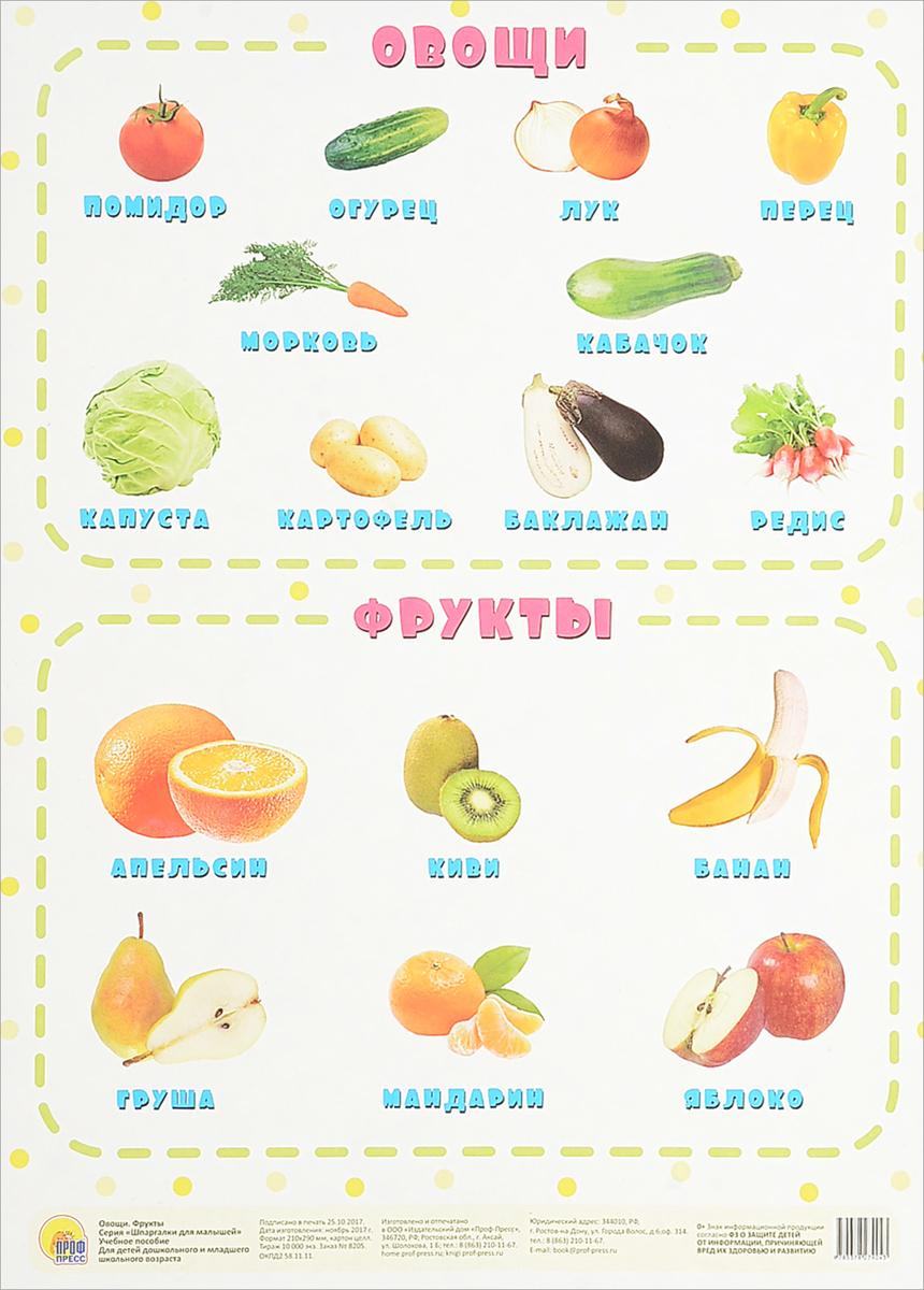 Овощи. Фрукты. Учебное пособие