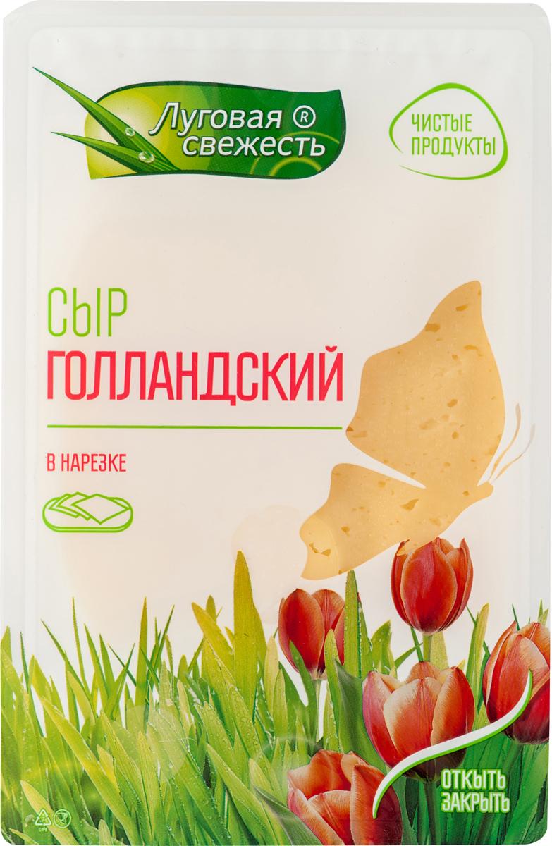 Луговая Свежесть Сыр Голландский, 45%, нарезка, 125 г175-404Сыр голландский относится к полутвердым сортам сыра, обладает приятным молочным вкусом, с характерной остротой и кислинкой Сыр упакован с применением защитной атмосферы, за счет чего сыр сохраняет все свои полезные свойства на протяжении всего срока