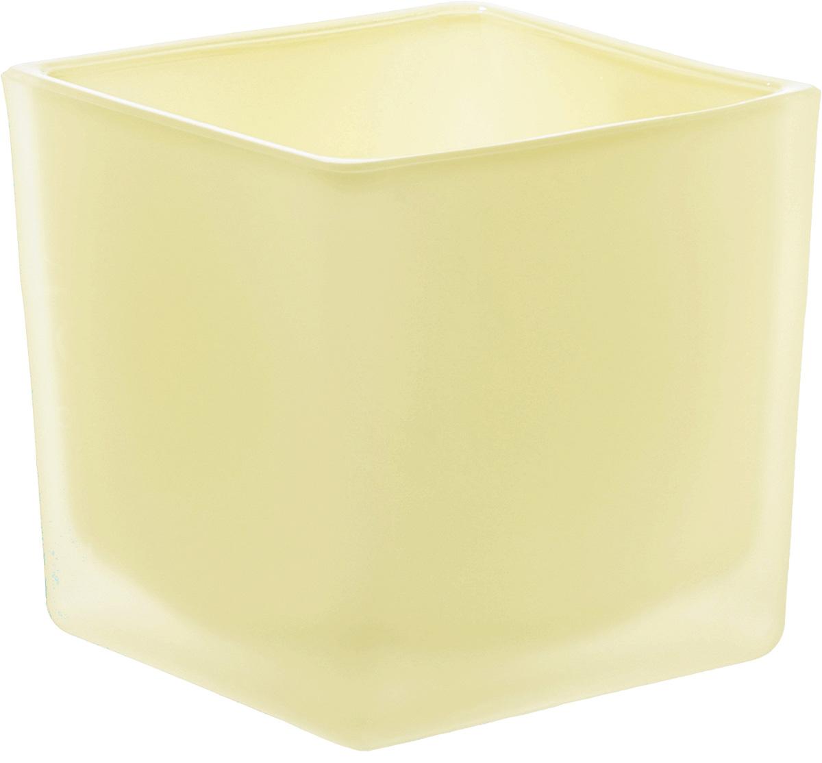 Кашпо-подсвечник Nina Glass Куб, цвет: ваниль, 600 млNG91-005VПродукция завода под брендом NinaGlass известна российскому потребителю необычностью форм и оригинальным декорированием. Главным достоинством стеклянных горшков является отсутствие пористости на их внутренней поверхности, что делает безопасной смену растительного состава. Предприятие производит два вида изделий для флористов:- стеклянные цветочные горшки с отверстием в дне для посадки в них цветов и растений и подставкой под горшок в виде блюдца;- кашпо без отверстия для укладки в них пластиковых контейнеров с цветами и растениями.Горшки и кашпо изготавливаются из опалового триплексного (тройного) стекла с различными видами декорирования водо- и износостойкими красками. Возможна окраска изделий изнутри. Матовая поверхность и окраска изнутри создают объемный эффект, а сами цвета очень мягкие и приятные. Также интересны и формы изделий, выполненные методом центробежного формования: - горшки НТ - современная модель горшка с поддоном, которые смотрятся как единое целое и обладают устойчивым широким дном;- кашпо НТ - глубокие, с небольшим радиусом выпуклости, хорошим широким дном. Кашпо-подсвечники в форме куба можно считать дополнительной опцией: вы можете оформить интерьер не только оригинальными горшками и кашпо, но также весьма привлекательными подсвечниками.Доступны 5 размеров горшков и кашпо и 3 размера кашпо-кубов. Продукция TM NinaGlass безопасна, функциональна, прочна и уникальна. Горшки и кашпо способны создать неповторимое настроение и стать центром интерьера в любом помещении.
