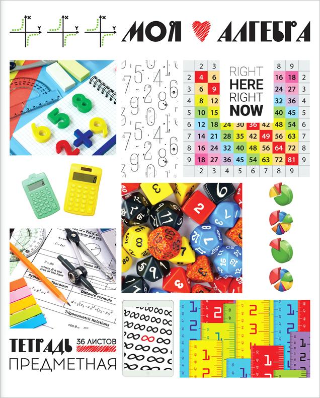 ArtSpace Тетрадь Копилка знаний Алгебра 48 листов в клетку254624Тетрадь тематическая по алгебре из серии Копилка знаний (в серии 12 предметов). Формат А5 (165х205 мм). Вид крепления – скрепка. Внутренний блок – 36 листов, офсет 60 г/м2, белизна 92%, линовка – клетка с полями. Обложка – мелованный картон, отделка обложки – ВД-лак.