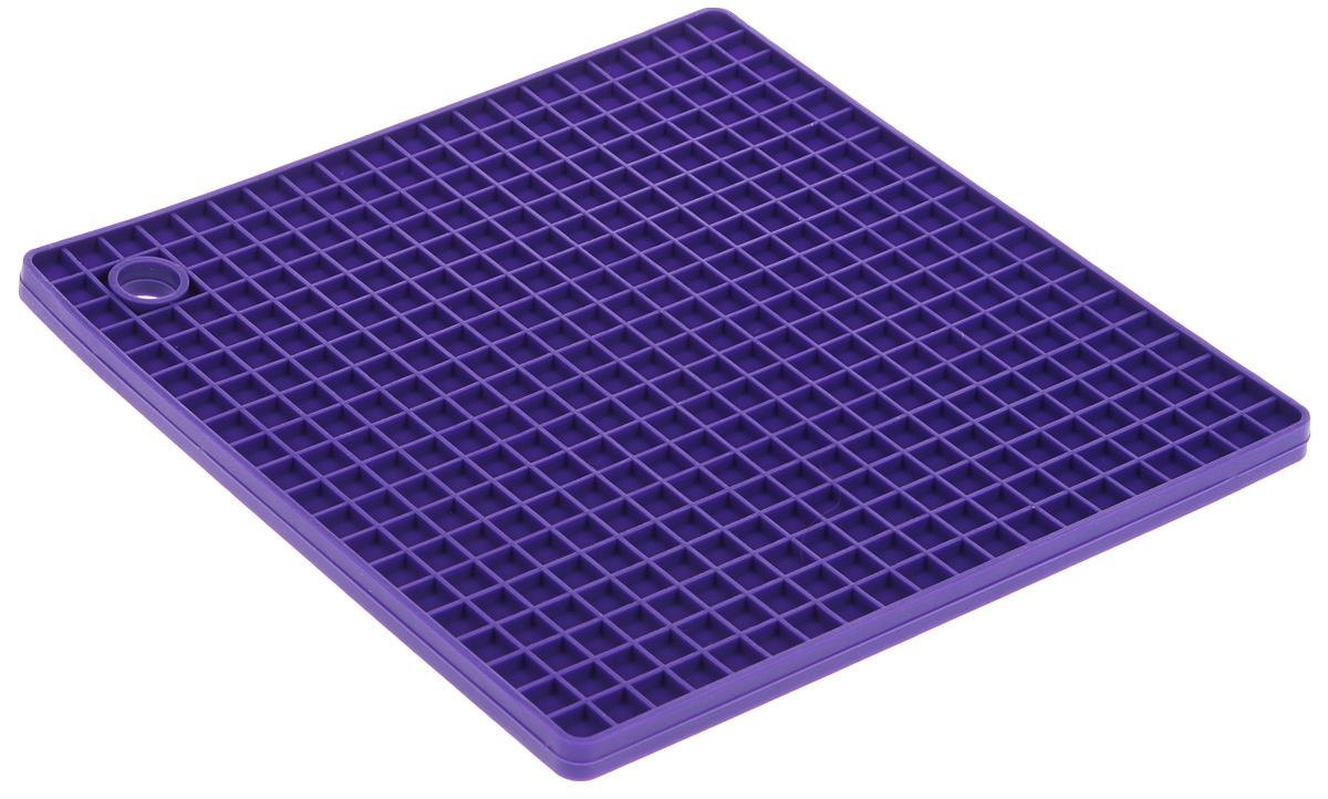 Подставка под горячее Gipfel Clum, силиконовая, цвет: фиолетовый, 17,5 х 17,5 х 0,8 см2810Подставка под горячее Gipfel Clum изготовлена из качественного термостойкого силикона. Подставка нескользит поповерхности, отверстие для подвешивания позволяет удобно расположить аксессуар на вашей кухне.