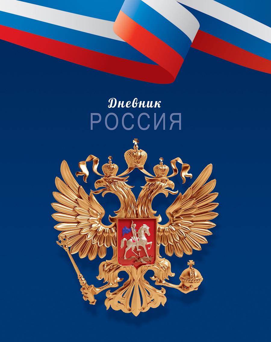 Апплика Дневник школьный Российская символика-30 б д сурис фронтовой дневник дневник рассказы