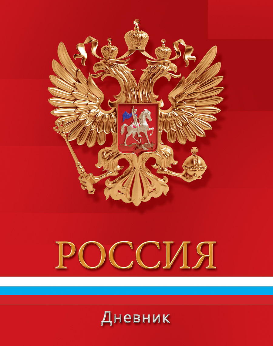 Апплика Дневник школьный для младших классов Российская символика-С3621-01 апплика дневник школьный для младших классов синий спорткар