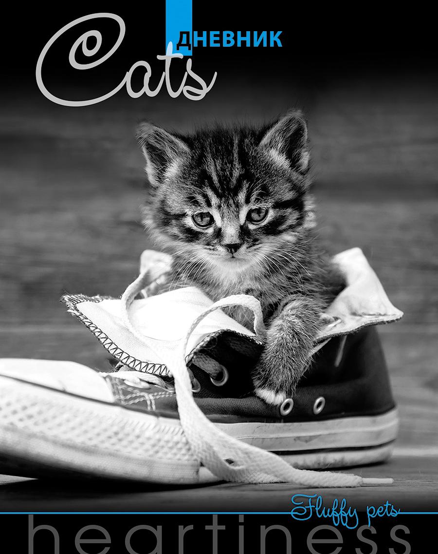 Апплика Дневник школьный Серый котенок С4072-08С4072-08Универсальный дневник в твердом переплете 40 листов. Дневник соответствует требованиям ГОСТа. Страницы из белой бумаги с синей печатью. Блок включает 36 учебных недель. Обложка выполнена из качественных материалов, рисунок обложки защищен глянцевой пленкой.