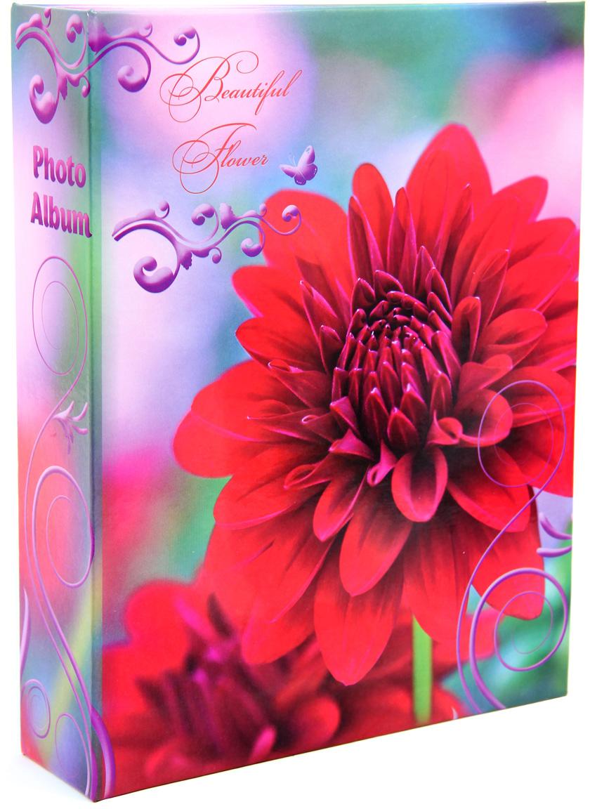 Фотоальбом Pioneer Beautiful Flower2, цвет: бирюзовый, 100 фото, 10 х 15 см46205 LM-4R200Тип обложки: ламинированный картон.Полипропиленовые карманы.Тип переплета: книжный.Кол-во фотографий: 200.Материалы, использованные в изготовлении альбома, обеспечивают высокое качество хранения Ваших фотографий, поэтому фотографии не желтеют со временем.