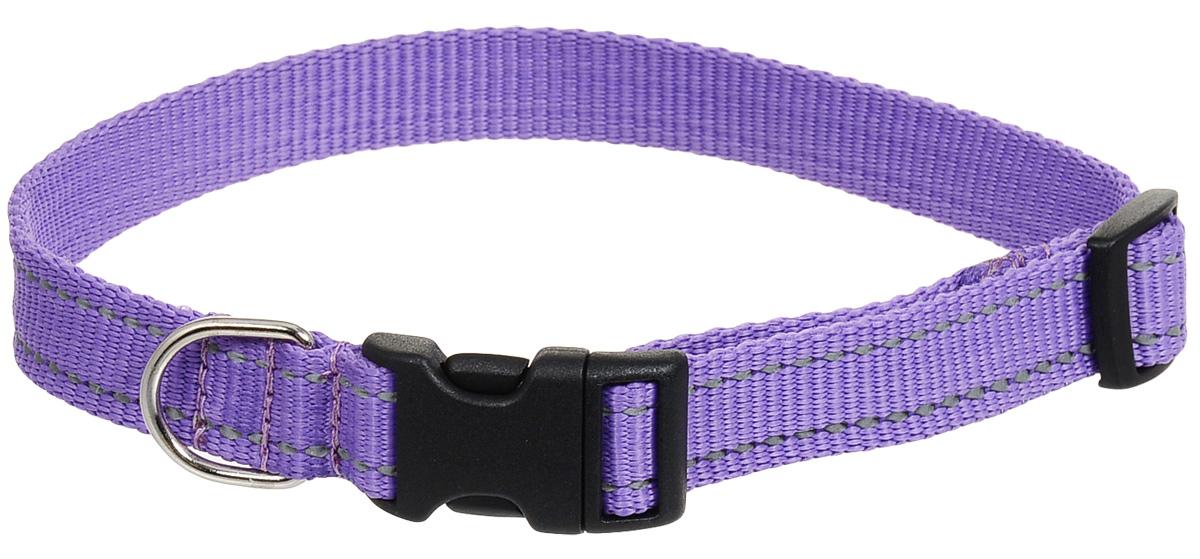 Ошейник для собак Аркон Капрон, ширина 2,5 см, обхват шеи 40-63 смок25_фиолетовый