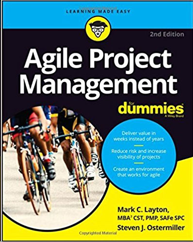 Agile Project Management for Dummies yuri raydugin project risk management essential methods for project teams and decision makers