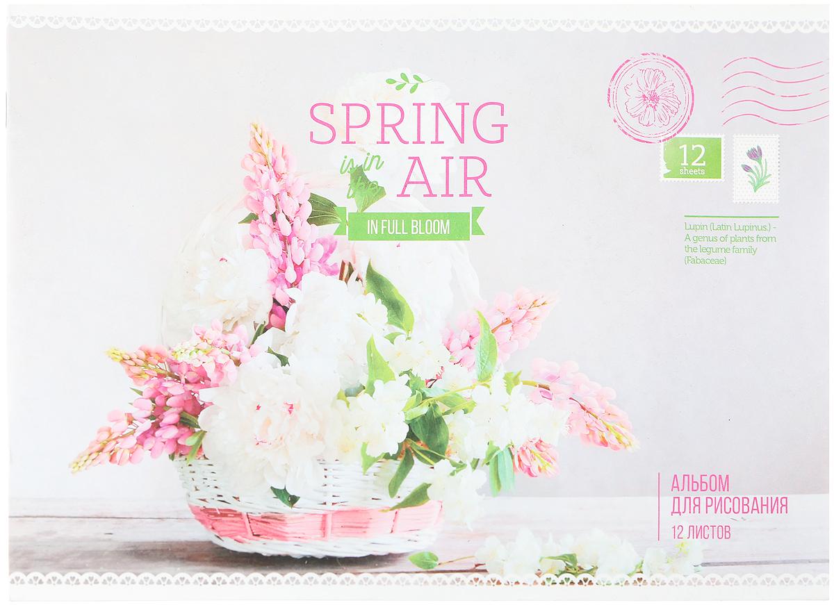 ArtSpace Альбом для рисования Spring In The Air 12 листов цвет серый белый розовыйА12ф_14198_серый, белый, розовыйArtSpace Альбом для рисования Spring In The Air 12 листов цвет серый белый розовый