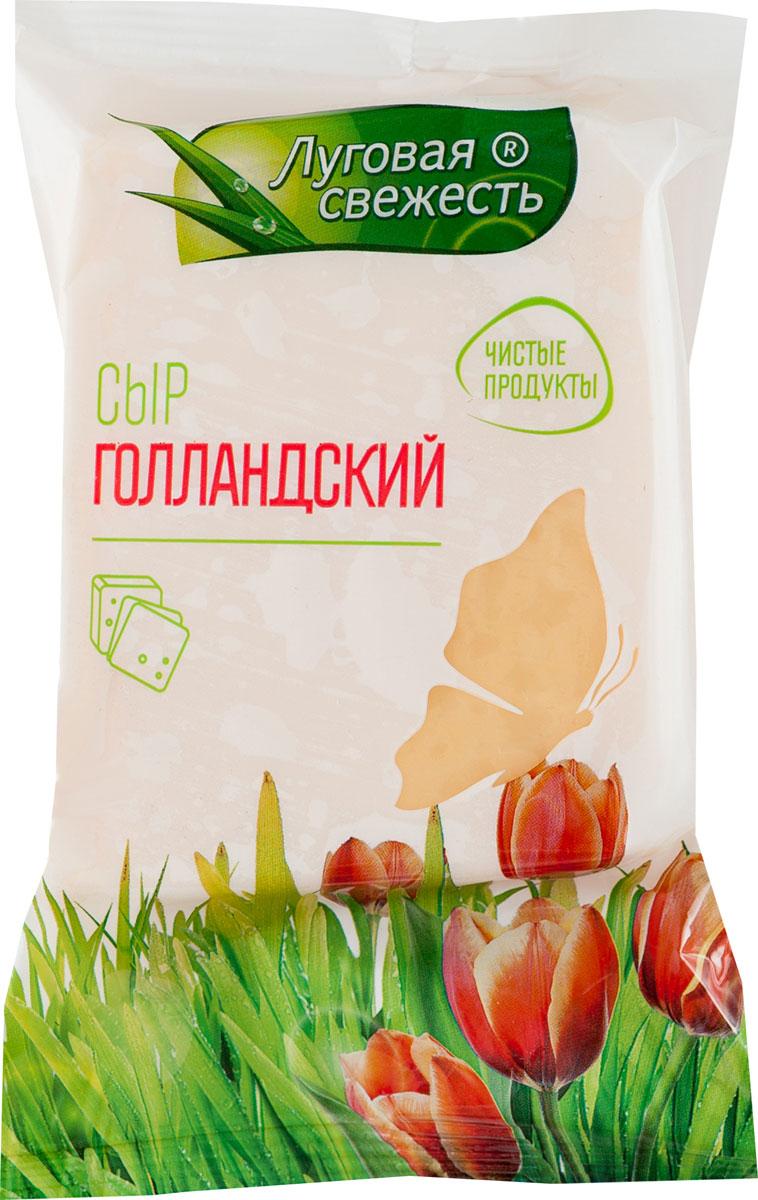 Луговая Свежесть Сыр Голландский, 45%, 225 г pasta zara клубки тонкие тальолини макароны 500 г
