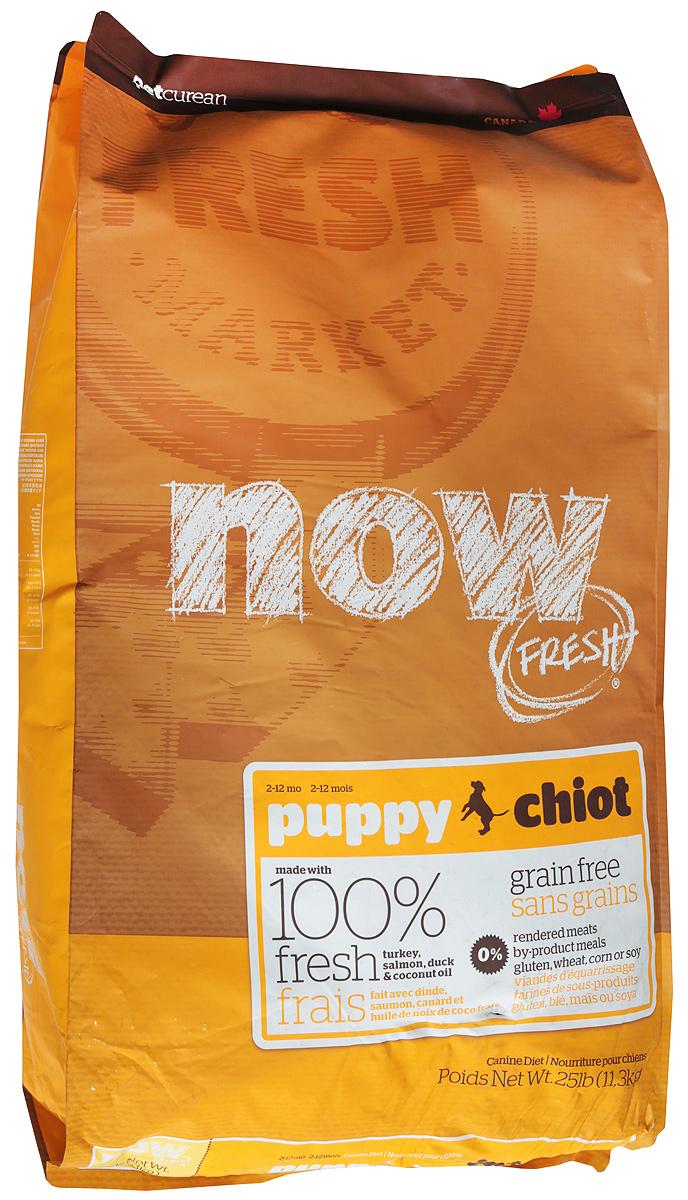 """Корм сухой """"Now Fresh"""" для щенков, беззерновой, с индейкой, уткой и овощами, 11,3 кг"""