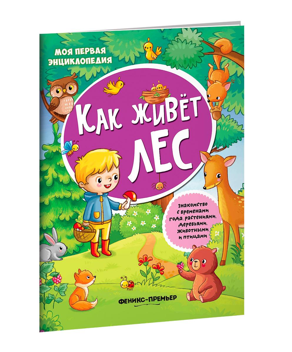 Ирина Смирнова Как живет лес. Книжка с наклейками