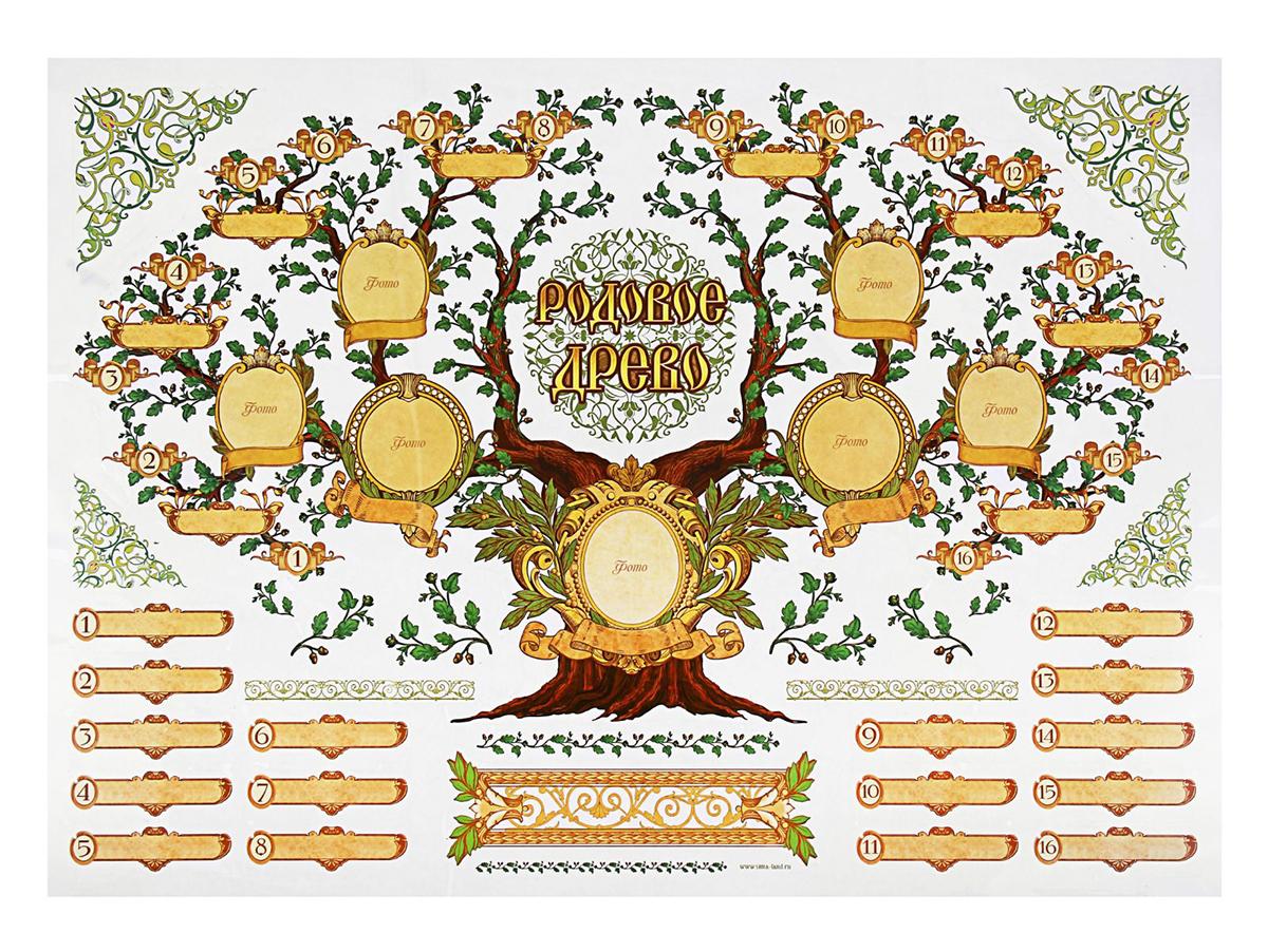 """Наклейка-фоторамка """"Родовое древо"""" поможет легко и красиво воссоздать генеалогическое древо семьи, и наглядно воссоединить несколько поколений. Прекрасный подарок дедушкам и бабушкам, которые с помощью такой фоторамки смогут каждый день видеть всю семью в сборе. Фоторамки-наклейки можно наносить на различные поверхности (виниловые и флизелиновые обои, плитку, стекла, зеркала, мебель, ровные пластиковые и металлические поверхности). Наклейки легко наклеиваются и не оставляют следов!"""