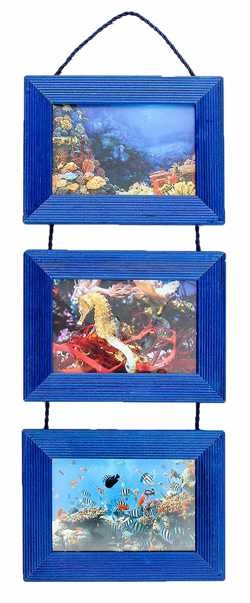 Фоторамка, подвесная, на 3 фото, цвет: синий. 25123552512355Каждому хозяину периодически приходит мысль обновить свою квартиру, сделать ремонт, перестановку или кардинально поменять внешний вид каждой комнаты. Фоторамка на 3 фото 10х15 подвесная, синяя — привлекательная деталь, которая поможет воплотить вашу интерьерную идею, создать неповторимую атмосферу в вашем доме. Окружите себя приятными мелочами, пусть они радуют глаз и дарят гармонию. Хотите создать своё небольшое генеалогическое древо, но не знаете как? Начните с такой прекрасной фоторамки в виде коллажа! Она не только украсит ваш интерьер, объединит дорогие сердцу события в одну замечательную композицию, но и заложит фундамент для создания семейного дерева. Такая необычная фоторамка станет чудесным подарком по случаю праздника.