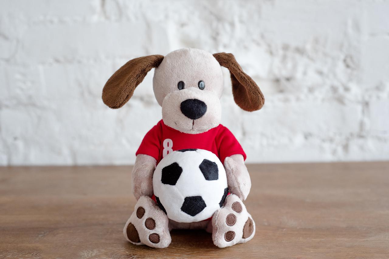 Плюш Ленд Мягкая игрушка Собака с мячиком 25 см радомир мягкая игрушка собака соня 55 см 2008906