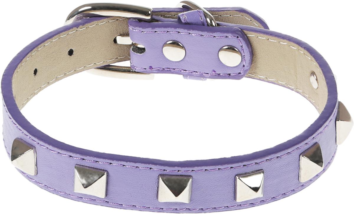 Ошейник для собак GLG, цвет: фиолетовый, 1,9 х 36 смAMG0835-36