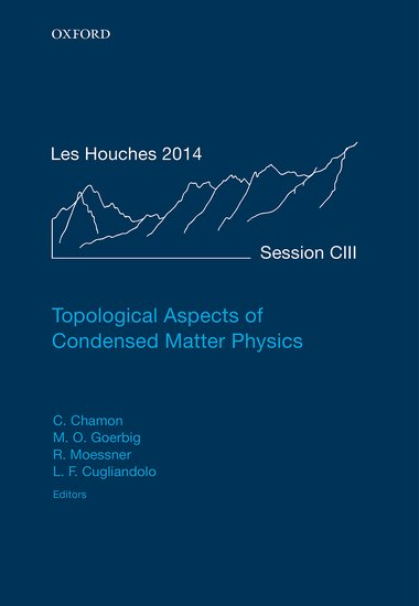 Topological Aspects of Condensed Matter Physics lidiya strautman introduction to the world of nuclear physics