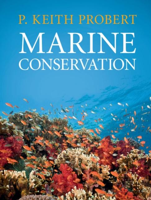 Marine Conservation global marine primary production