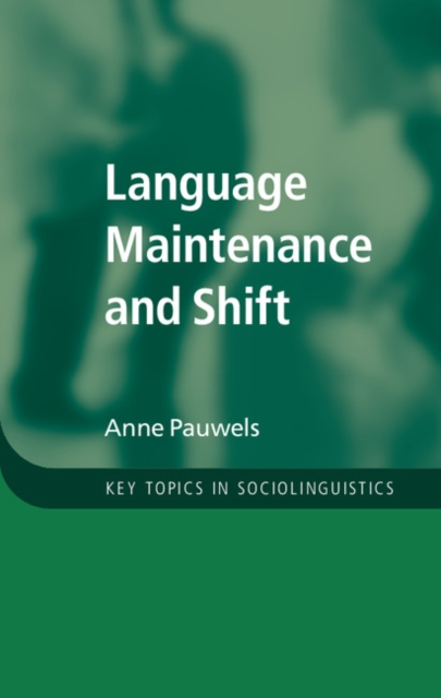 Language Maintenance and Shift linguistic variation in a multilingual setting