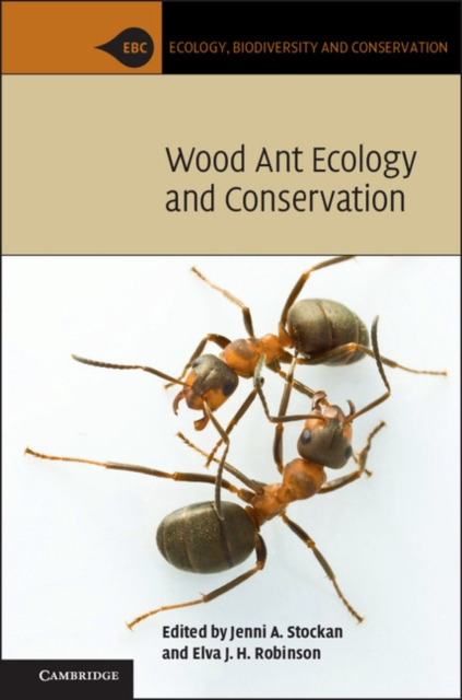 Wood Ant Ecology and Conservation live giant lighted ecosystem ant habitat shipped with 25 live ants now 1 tube of ants