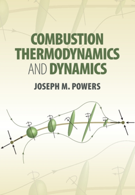 Combustion Thermodynamics and Dynamics купить