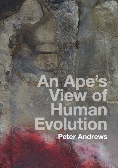 An Ape's View of Human Evolution anatomy of a disappearance