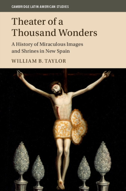 Theater of a Thousand Wonders a new literary history of america