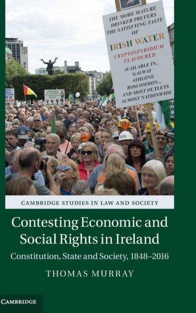 Фото Contesting Economic and Social Rights in Ireland business and ethics in a country with political socio economic crisis