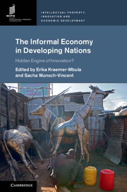 The Informal Economy in Developing Nations arcade ndoricimpa inflation output growth and their uncertainties in south africa empirical evidence from an asymmetric multivariate garch m model