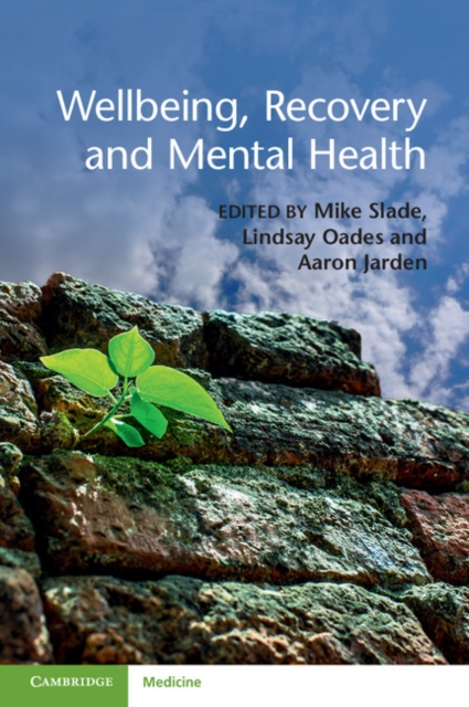 Wellbeing, Recovery and Mental Health mental health traditional medicine and psychiatry in sudan