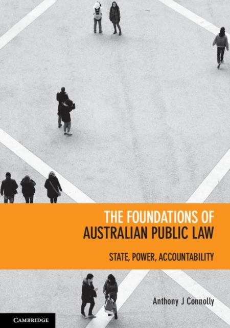 The Foundations of Australian Public Law hollowed circle faux pearl drop earrings