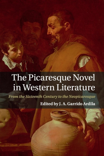 The Picaresque Novel in Western Literature the lonely polygamist – a novel