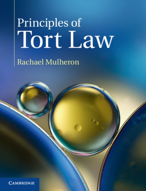 Principles of Tort Law tort law