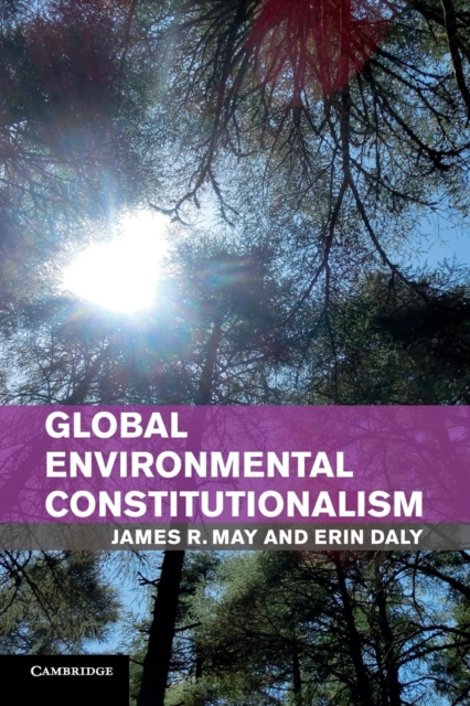 Global Environmental Constitutionalism.