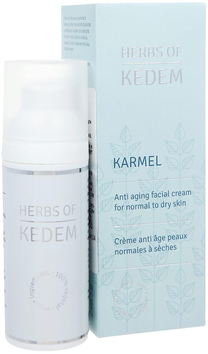 Kedem Вечерний крем для сухой и смешанной кожи Karmel, 50 млKD12Kedem Karmel - крем, содержащий растительные компоненты и воду Мертвого моря, для интенсивного питания и защиты чувствительной кожи лица.Крем может применяться без ограничений, включая область глаз (в первую неделю применения желательно не наносить под глаза). Рекомендуется использовать крем ежедневно, не нарушая цикличности.В случаях очень сухой кожи, для усиления воздействия можно применять совместно с питательной сывороткой Меши, а для комплексного ухода за кожей лица желательно ежедневно использовать тоник для утреннего умывания Бокер, вечерний лосьон для лица Авив, мазь для нежной кожи вокруг глаз Цуким и как минимум раз в неделю пилинг-маску Тишрей. Питает кожу необходимыми витаминами и минералами, богат природными антиоксидантами и витаминами; Обладает выраженным антивозрастным эффектом: замедляет старение кожи и появление морщин; Обеспечивает потребность кожи в аминокислотах; Успокаивает кожу и защищает от излишнего солнечного излучения.