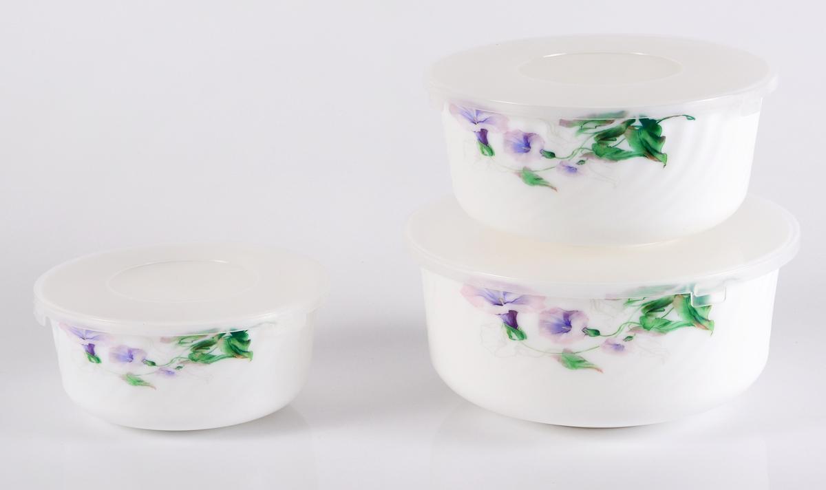 Набор столовой посуды Olaff Скарлет, с крышками, 3 предмета салатник набор 6шт 600 мл ens салатник набор 6шт 600 мл