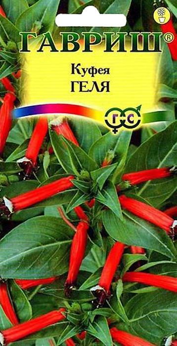 Семена Гавриш Куфея. Геля огненно-красная4601431013353Стелющееся, кустистое растение до 30 см в высоту. Выращивается как комнатное растение или как однолетнее в открытом грунте. Цветки различных оттенков, одиночные, до 3 см длиной, расположены по всей длине стебля.Посев на рассаду в марте-апреле в ящики. Семена слегка вдавливают в почву, землей не присыпают. Посадочную емкость накрывают стеклом и ставят в освещенное теплое место. При температуре почвы +18-22°C всходы появляются на 10-15 день. Рассаду высаживают в мае после окончания весенних заморозков в горшки или балконные ящики. Расстояние между растениями 30 - 35 см. Цветение с конца июня до заморозков. Возможен прямой посев в мае непосредственно в открытый грунт. В таком случае цветение начнется с августа и до наступления заморозков. Все куфеи светолюбивы, засухоустойчивы и очень теплолюбивы. Поливы важны после высадки рассады и в сухую погоду. Подкормки обеспечивают обильное цветение. Великолепно смотрится в подвесной корзине, где размещают 2-3 растения для большей декоративности. Можно использовать в бордюрах.