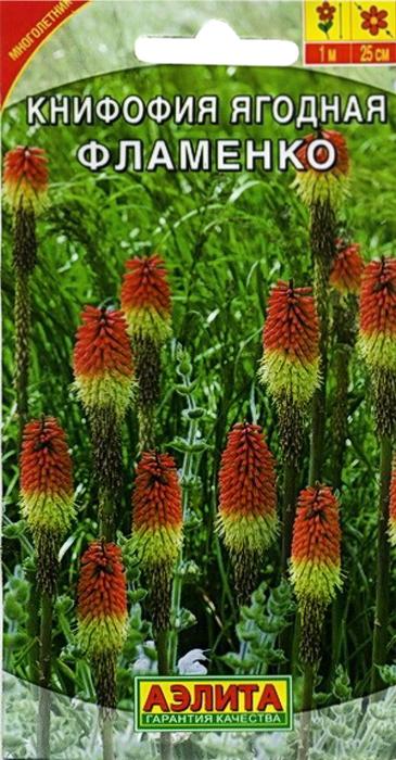 Семена Аэлита Книфофия ягодная. Книфофия ягодная Фламенко4601729079504Многолетнее корневищное растение, выходец из Африки. Отлично прижилось на юге России, успешно осваивает центральные регионы.Листья мечевидные, серовато-зеленые, 50 см длиной. Цветоносы высотой около 1 м венчают плотные колосовидные соцветия, похожие на горящие факелы. Яркие цветы книфофии привлекают пчел и бабочек со всей округи.Растения эффектно смотрятся в групповой посадке на газонах, у водоемов и в смешанных цветниках. Экзотические соцветия-факелы неотразимы в букетах.Как выращивать семена книфофии ягодной ФламенкоПосев семян на рассаду в марте - начале апреля, всходы появляются через 3 недели. Сеянцы в фазе 2-3 настоящих листьев пикируют, а с середины июня высаживают не постоянное место в сад с шагом 30-40 см.Выращенные из семян растения зацветают на второй год.Книфофия хорошо растет и развивается на плодородных, дренированных нейтральных почвах, на солнечном месте. Легко переносит засуху, полив умеренный. Осенью соцветия обрезают, листья связывают в пучки.В условиях юга зимует с минимальным укрытием или без него, в более северных регионах розетку укрывают по воздушно-сухому типу (no примеру роз). Если есть условия, то кусты книфофии можно выкопать, пересадить в горшки и убрать на зимовку в прохладное помещение.