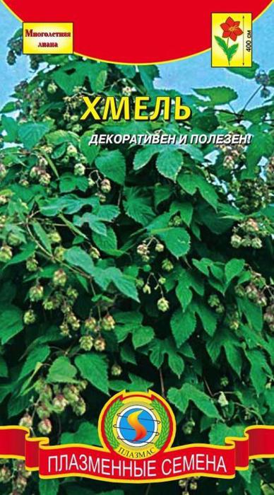 Семена Плазмас Хмель лазающий4607171982676Хмель за короткое время может образовать зелёную стену, ограничивающую видимость и защищающую от ветра. Быстрорастущая вьющаяся лиана, свободно вырастающая в высоту до 4м. Листья на длинных черешках глубоко трёхлопастные, в очертаниях почковидные или округлые, тёмно-зелёные. Всё растение покрыто волосками. Цветки невзрачные. Плод – коробочка с семенами. Хорошо размножается самосевом. Хмель сочетает в себе декоративные качества и полезность с медицинской точки зрения.Посев: непосредственно в грунт в начале мая. Глубина заделки семян 1,0-1,5см. Для получения вызревших семян в средней полосе России производят посев в апреле в комнатных условиях. Появившиеся через 2 недели всходы пикируют в маленькие горшки, а в июне с комом земли высаживают на постоянное место. Расстояние между растениями - 30 см. Предпочитает богатую, плодородно-суглинистую почву, с песчаной, пропускающей воду подпочвой; полутенистое место,Уход: обильный полив во время роста, но надо избегать застойной влаги. Каждые 6-7 недель – подкормка. Нуждаются в опоре.Высота: 4 м. Количество семян: 4 шт