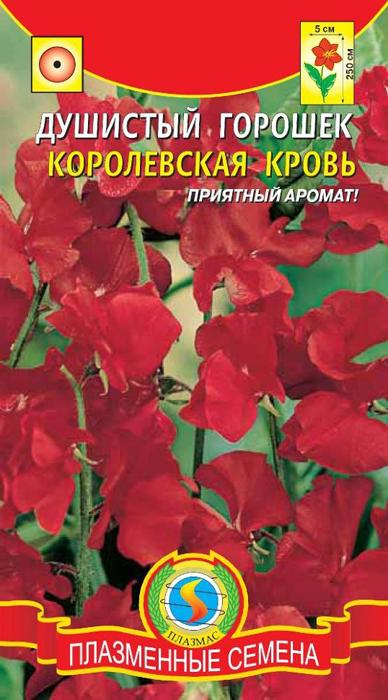 Семена Плазмас Горошек душистый. Королевская кровь4607171983819Великолепное лазящее растение с приятным ароматом. Высотой до 250 см. Цветки крупные, ароматные, ярко-красного цвета. На одной цветоножке собрано по 4-5 ароматных цветков с волнистыми лепестками. Используют для вертикального украшения балконов, терасс, веранд, изгородей и беседок. Срезанные цветы долго стоят в воде. На рассаду в марте-апреле, предварительно замочив семена в горячей (30-400С) воде на ночь. Всходы появляются через 14 дней при температуре 15-200С. На постоянное место рассаду высаживают в конце мая по схеме 30*25см, не повреждая земляного кома. Можно сеять наклюнувшиеся семена прямо в открытый грунт, в начале мая. Когда растения достигнут высоты 10см, верхушки побегов прищипывают. Предпочитает солнечные, защищённые от ветра места; почвы – дренированные, известкованные, удобренные. Но нельзя перед посадкой вносить в почву свежий навоз – растения погибнут от грибных болезней.