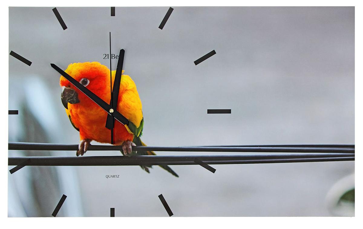 Часы настенные прямоугольные 21 Век Попугай, 61 х 37 см картины в квартиру картина попугай 42х52 см