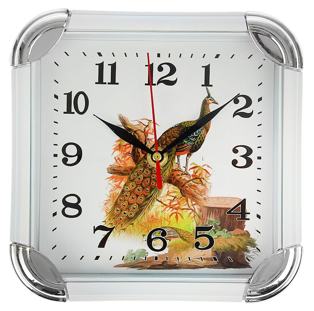 Часы настенные Павлин, 19,5 х 19,5 см1384796Каждому хозяину периодически приходит мысль обновить свою квартиру, сделать ремонт, перестановку или кардинально поменять внешний вид каждой комнаты. Часы настенные квадратные Павлин, с закругленными краями, белый обод, малые — привлекательная деталь, которая поможет воплотить вашу интерьерную идею, создать неповторимую атмосферу в вашем доме. Окружите себя приятными мелочами, пусть они радуют глаз и дарят гармонию.Часы настенные круг квадратные Павлин, белый обод, 19,5х19,5 см 1384796
