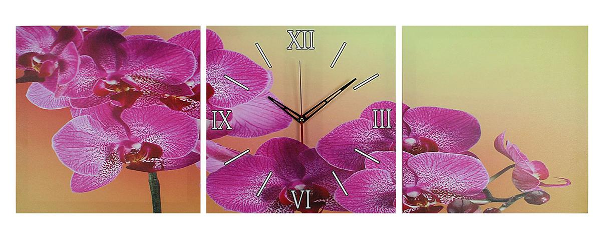 Часы настенные модульные Сюжет Фиолетовые орхидеи, 35 х 110 см. 20449902044990Каждому хозяину периодически приходит мысль обновить свою квартиру, сделать ремонт, перестановку или кардинально поменять внешний вид каждой комнаты. Часы настенные модульные «Фиолетовые орхидеи», 35 ? 110 см — привлекательная деталь, которая поможет воплотить вашу интерьерную идею, создать неповторимую атмосферу в вашем доме. Окружите себя приятными мелочами, пусть они радуют глаз и дарят гармонию. Часы настенные модульные «Фиолетовые орхидеи», 35 ? 110 см — сувенир в полном смысле этого слова. И главная его задача — хранить воспоминание о месте, где вы побывали, или о том человеке, который подарил данный предмет. Преподнесите эту вещь своему другу, и она станет достойным украшением его дома.Часы настенные модульные Фиолетовые орхидеи, 35х110 см 2044990