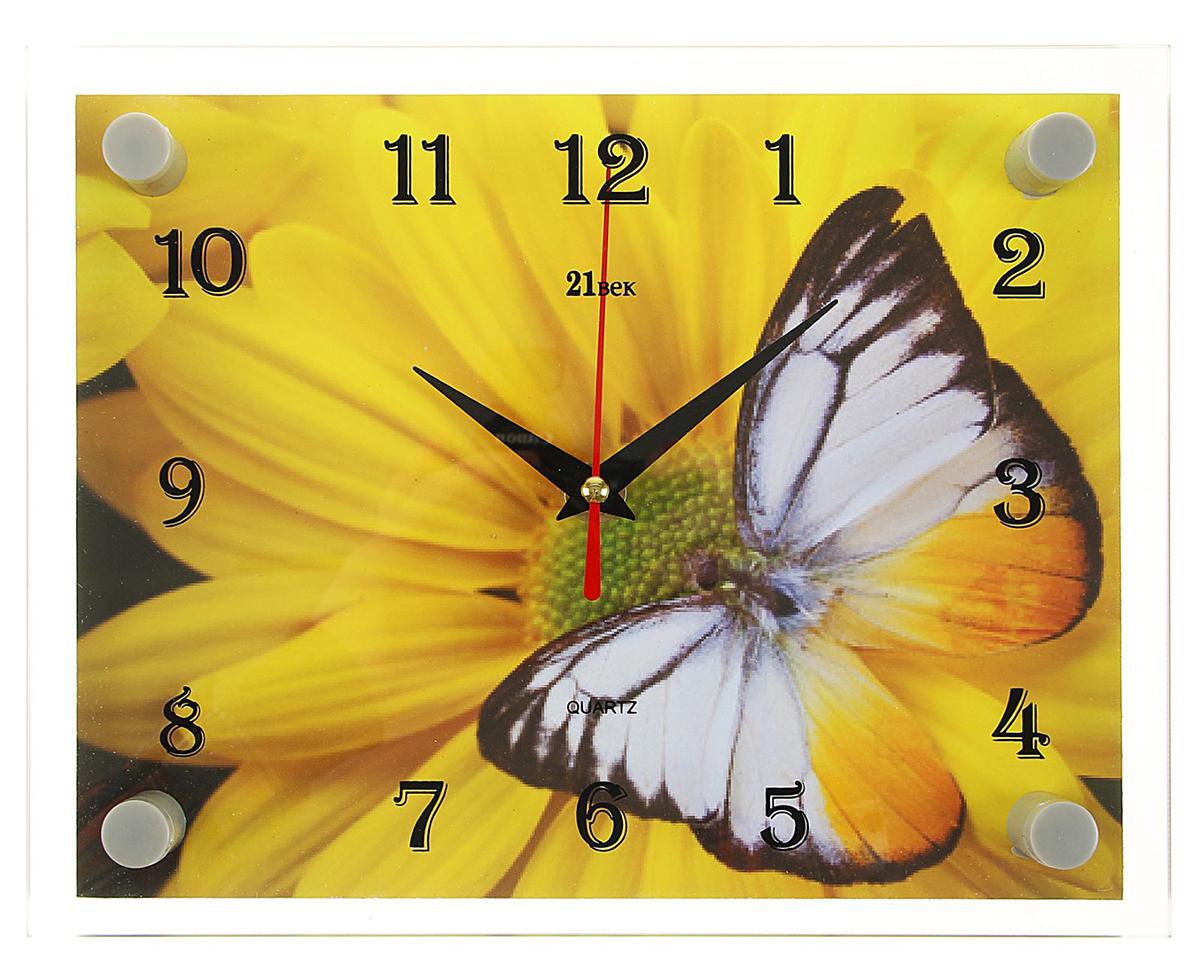 Часы настенные прямоугольные 21 Век Бабочка на цветке, 20 х 26 см2267870Каждому хозяину периодически приходит мысль обновить свою квартиру, сделать ремонт, перестановку или кардинально поменять внешний вид каждой комнаты. — привлекательная деталь, которая поможет воплотить вашу интерьерную идею, создать неповторимую атмосферу в вашем доме. Окружите себя приятными мелочами, пусть они радуют глаз и дарят гармонию.— сувенир в полном смысле этого слова. И главная его задача — хранить воспоминание о месте, где вы побывали, или о том человеке, который подарил данный предмет. Преподнесите эту вещь своему другу, и она станет достойным украшением его дома.Часы настенные прямоугольные Бабочка на цветке, 20х26 см 2267870